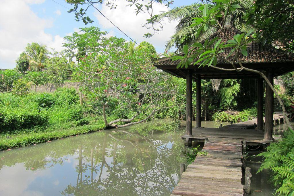Singapore expat Bali